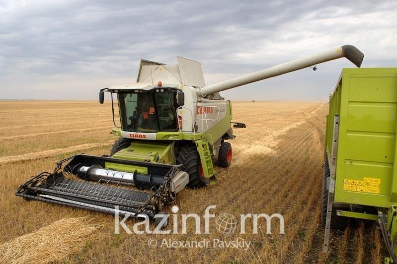 Более 83% площадей зерновых и зернобобовых убрано в Казахстане
