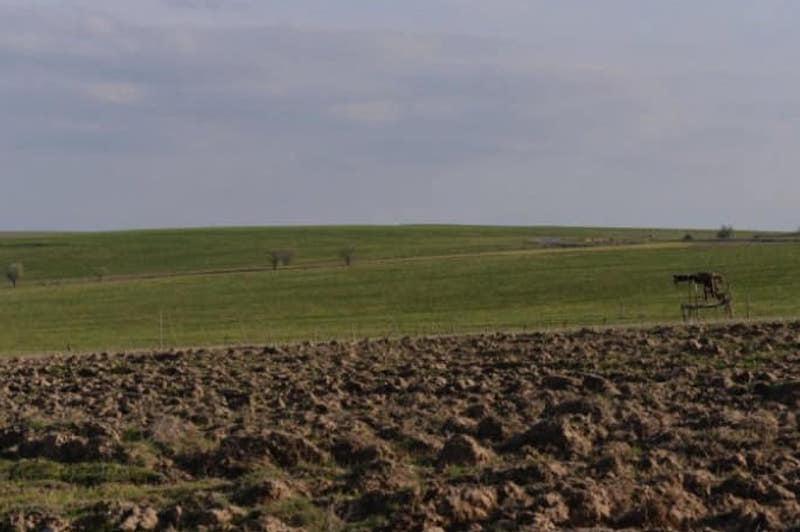 Более 2300 га неосвоенных земель возвращены государству в Ордабасинском районе