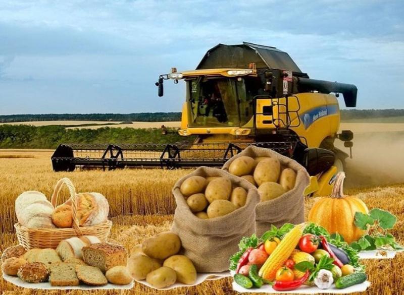2020年上半年哈对华出口农产品1.96亿美元