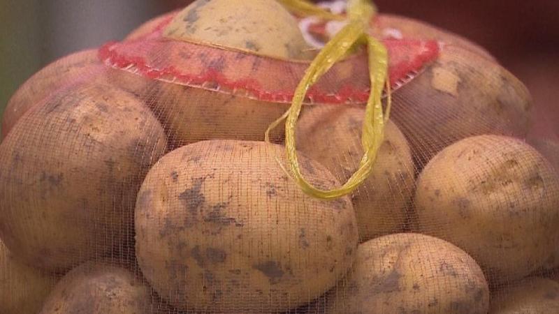 哈萨克斯坦将增加土豆的出口
