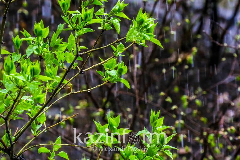 Kazakhstan wakes up to rainy and windy Thursday