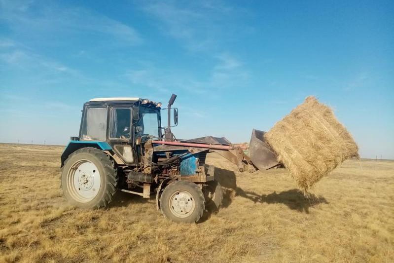 Почти 80% планируемого объема сена собрали фермеры Казталовского района ЗКО