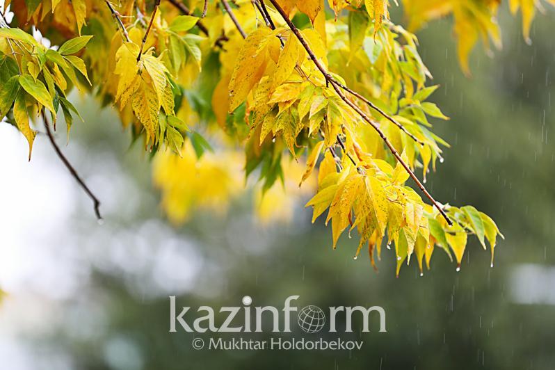 Дожди ожидаются в Казахстане 18 сентября