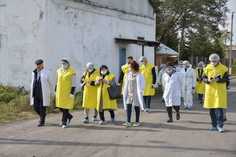 Спецгруппа прибыла в СКО для контроля за эпидситуацией по птичьему гриппу  - Минсельхоз РК