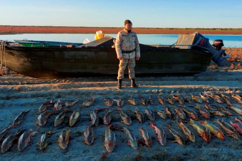 Два браконьера выловили 245 кг осетровых на Каспии