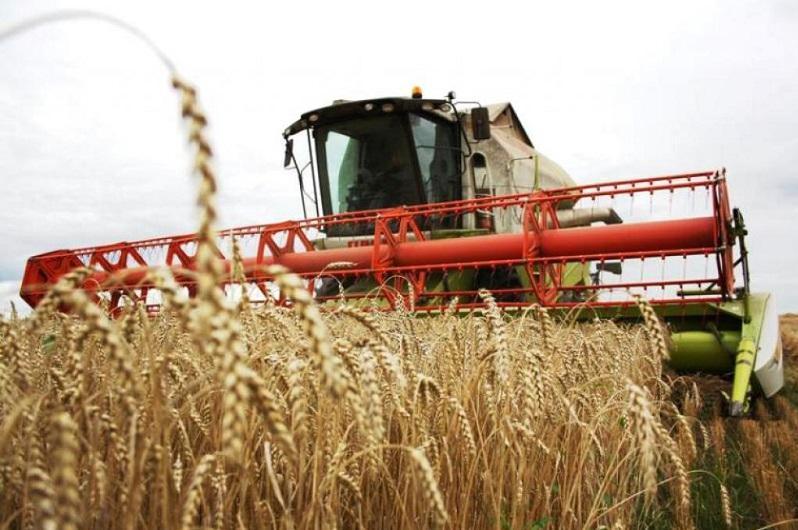 Уборка урожая завершается в Карагандинской области