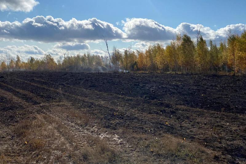 За пожар на зернотоке оштрафуют руководителя компании в СКО