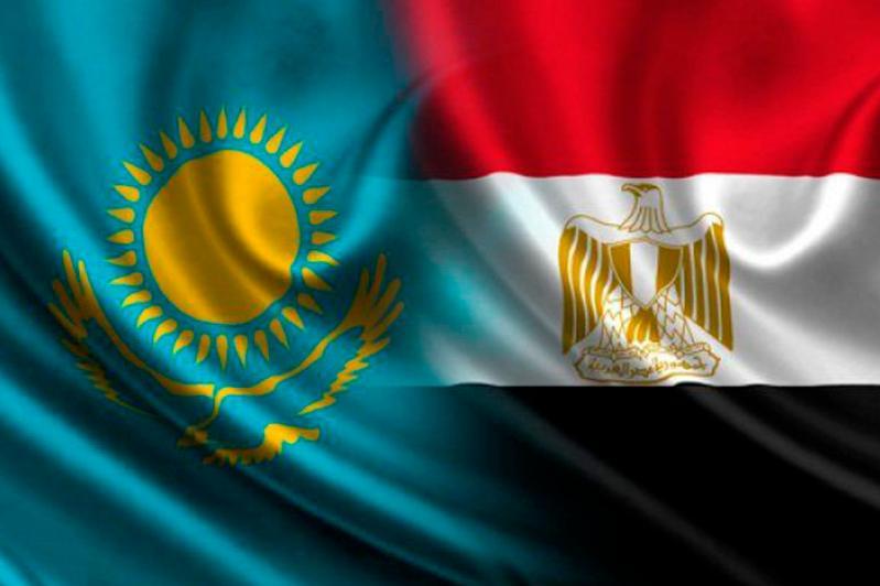 哈萨克斯坦大使向埃及总统递交国书