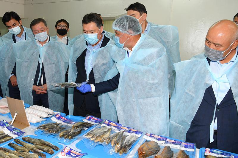 Аскар Мамин провел семинар-совещание по развитию рыбной отрасли РК