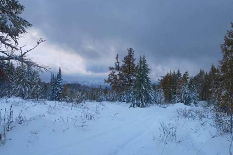 Cнег выпал в горах Восточно-Казахстанской области