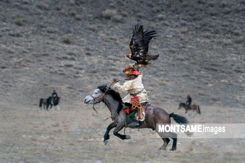 蒙古国哈萨克猎鹰节将于10月举行