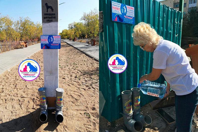 Кормушки для бездомных животных установили в Актобе