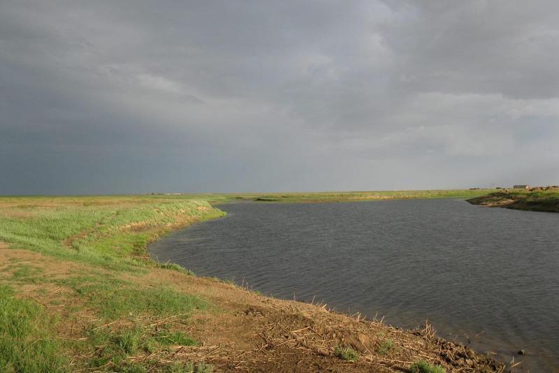 Неиспользованные 2,6 тыс. га сельскохозяйственных земель вернули государству в ЗКО