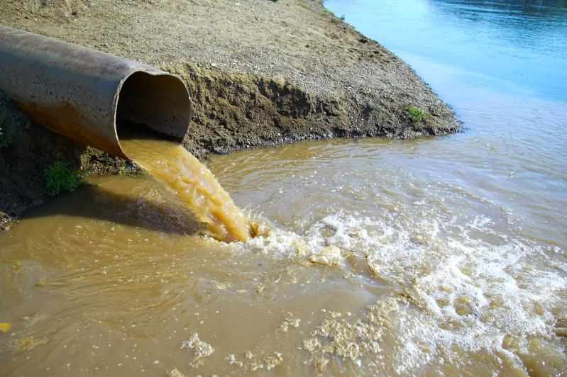 В отношении «Алматы су» начата проверка из-за сброса частным сектором сточных вод в реку