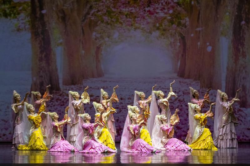 阿斯塔纳芭蕾舞剧院举行了三场面向医生的慈善演出