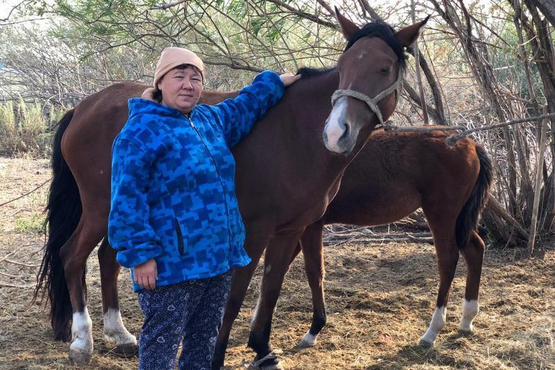 Многодетная мать из Актюбинской области получила грант на производство кумыса
