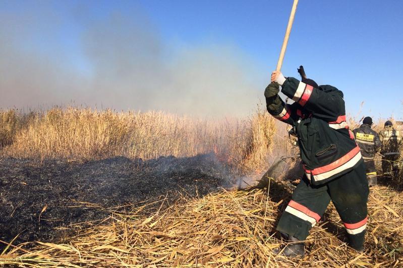 Возгорание камыша ликвидировали в Атырауской области