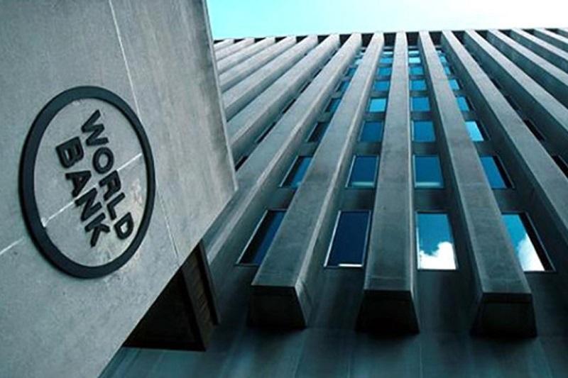 世行首席经济学家:冠病疫情或引发金融危机