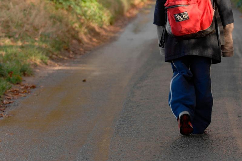 10 км по трассе прошел заблудившийся шестилетний мальчик в СКО