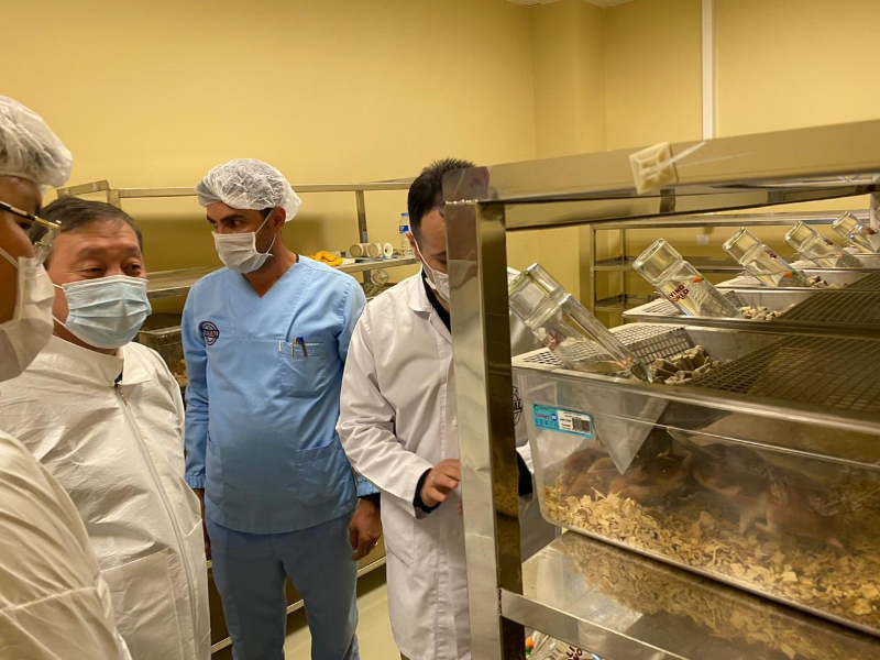 Казахстан и Турция договорились о производстве ветпрепаратов и вакцин