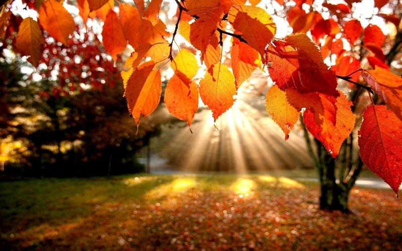 Погода без осадков будет в Казахстане 20 октября