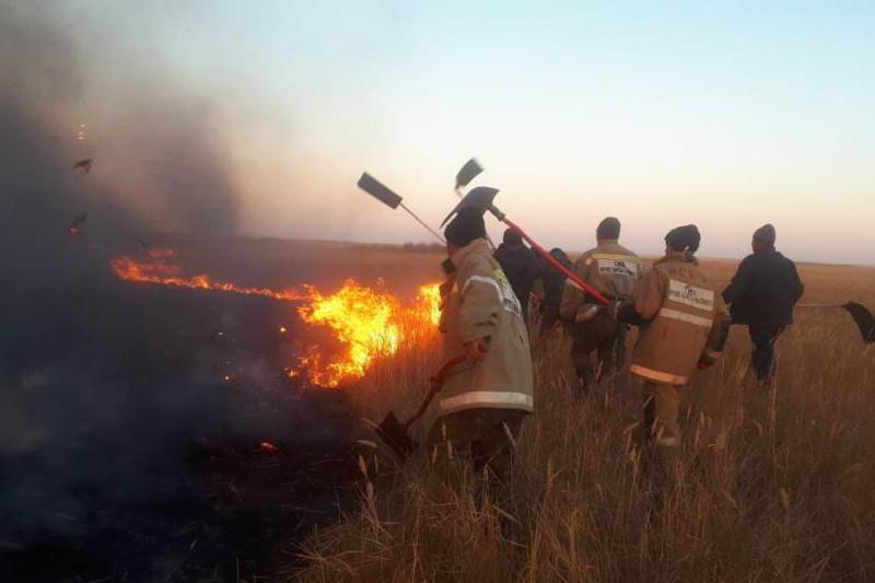 Четыре гектара камыша и сухой травы горело в Жамбылской области