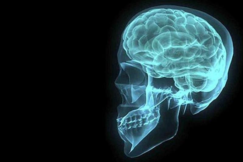 Scientists find potential new organs inside human head