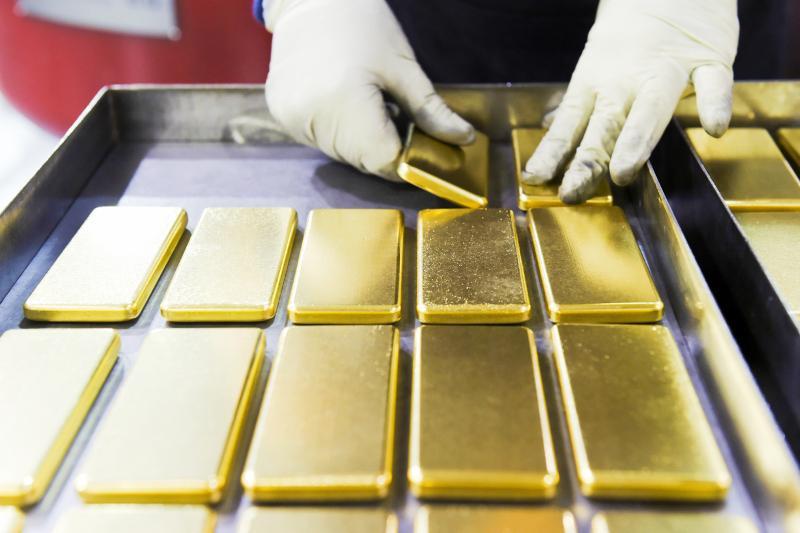 Жамбыл облысында алтын өндіретін зауыт салынады