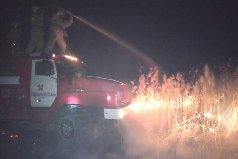 700 голов мелкого рогатого скота погибло при пожаре в Кызылординской области
