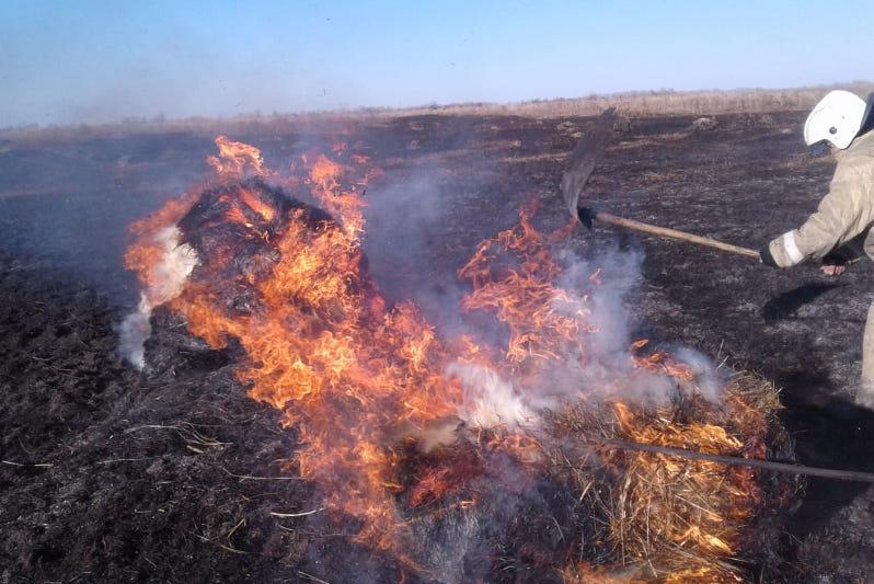 Трактор стал причиной степного пожара в ВКО