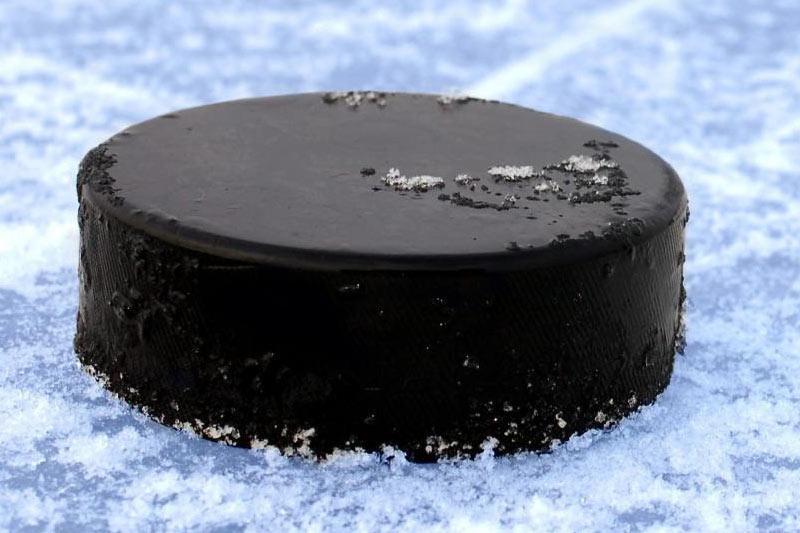 Названа дата старта молодёжного чемпионата Казахстана по хоккею