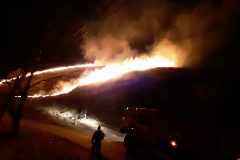 В пяти районах Алматы горел сухостой
