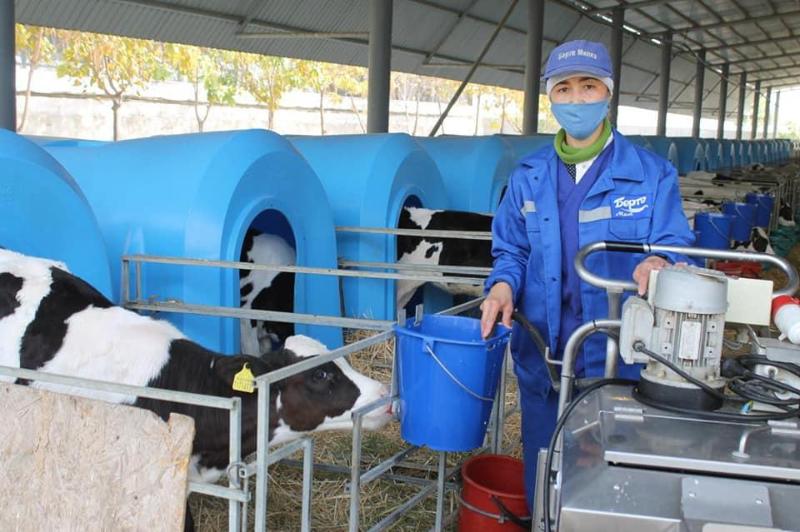 Первый центр ветеринарного обучения и обслуживания открыли в Туркестанской области