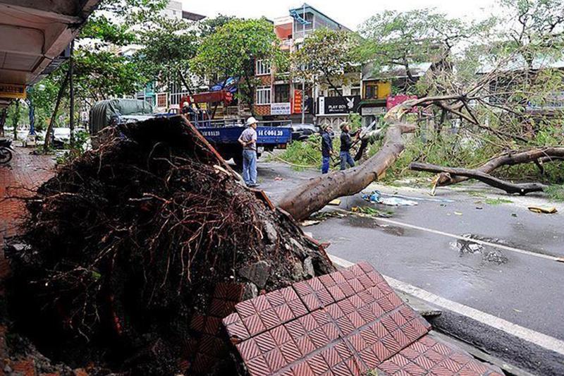 Vietnam: Fatalities hit 16 due to Storm Molave