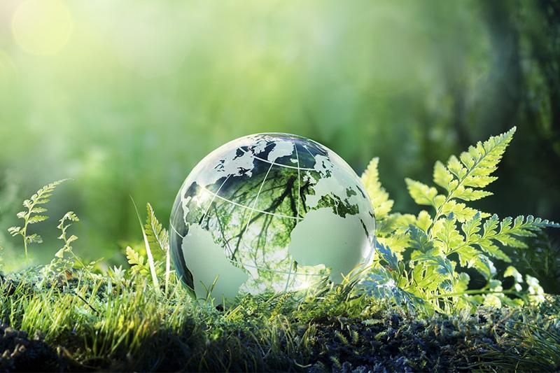 """哈萨克斯坦2处自然保护区或将被列入世界""""人与生物圈计划"""""""