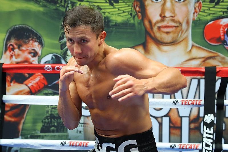 拳坛分析人士:戈洛夫金或将对阵巴西拳手法尔考