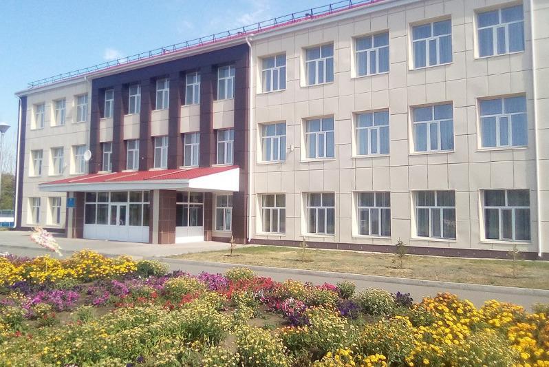 Телемост между воспитанниками детских домов прошел в Акмолинской области