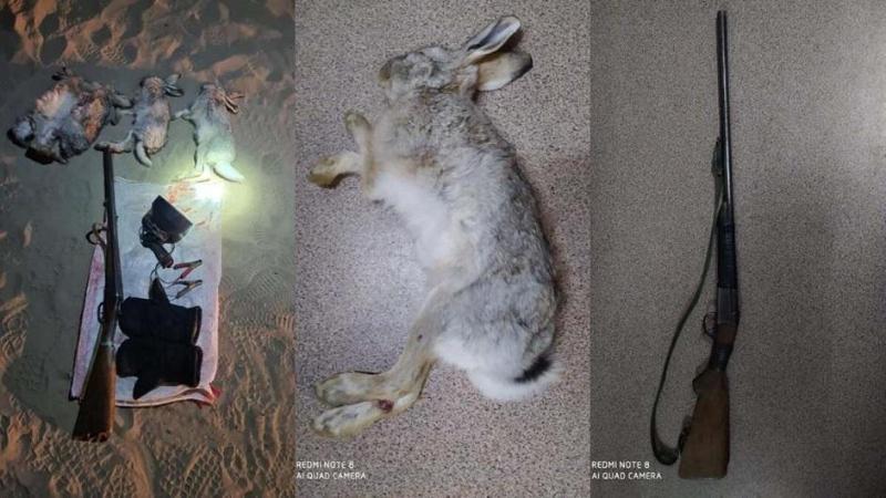 Охотники на зайцев задержаны полицией в Алматинской области
