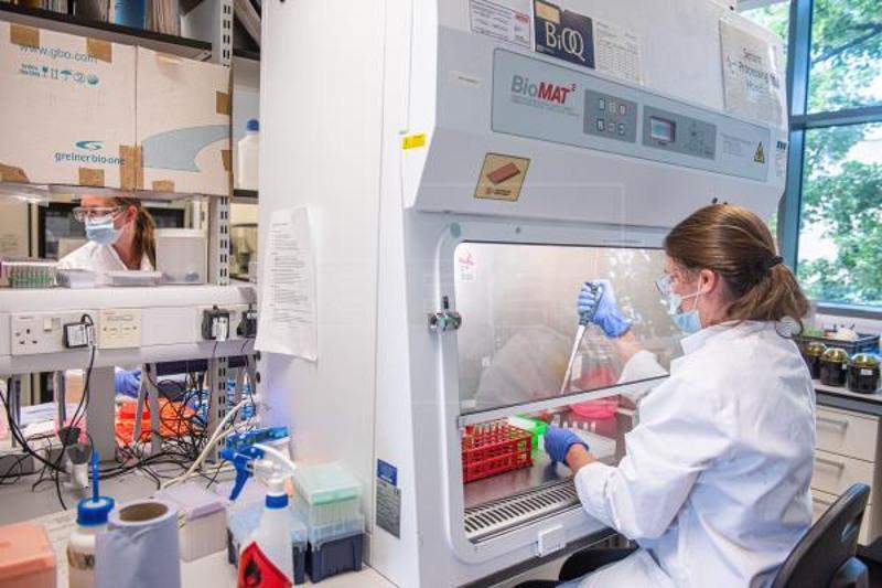 Germany 'optimistic' over vaccine; Oxford-AstraZeneca results 'fantastic'