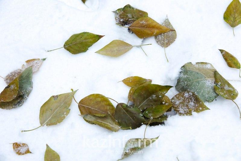 Снег прогнозируется в нескольких регионах Казахстана 26 ноября