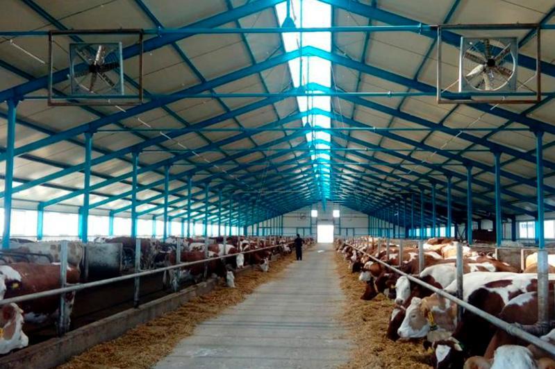 В Акмолинской области начато строительство новой молочно-товарной фермы