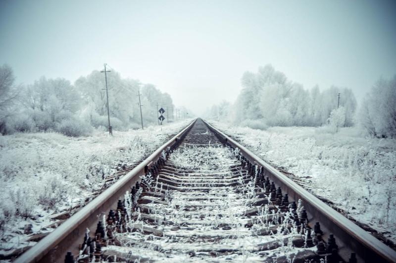 Грузовой поезд сбил лошадь в Павлодарской области