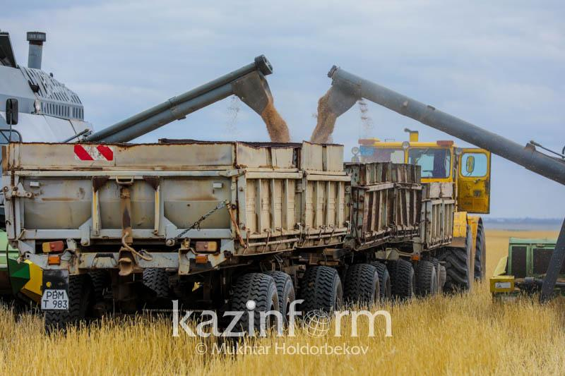 Аскар Мамин: Сбор зерна повысится до 25 млн тонн в год за счет цифровизации