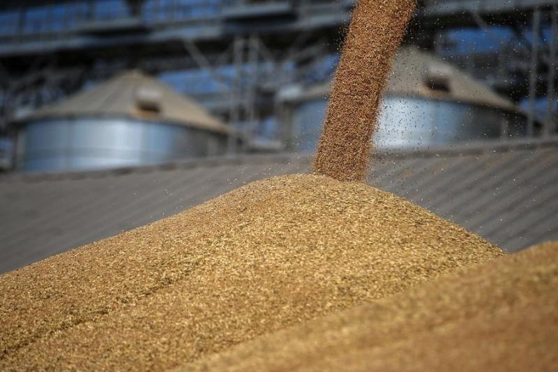 西哈州今年出口13.3万余吨农产品