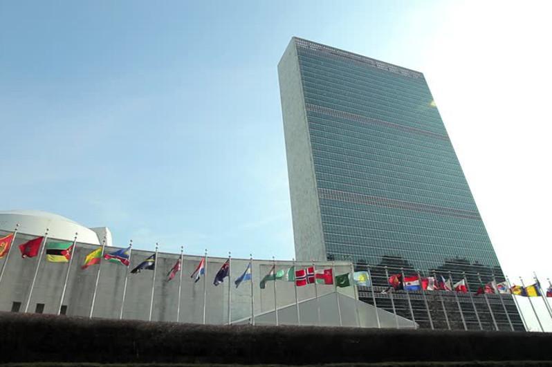 联合国大会通过关于塞梅地区复兴的决议
