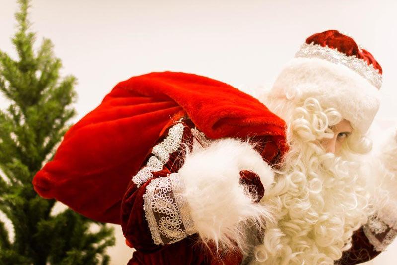 Возрастает риск переноса инфекции - Минздрав о вызове на дом Деда Мороза и Снегурочки