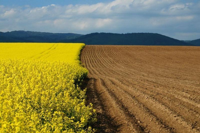 В Атырауской области государству вернули 273 тыс га неиспользуемых земель