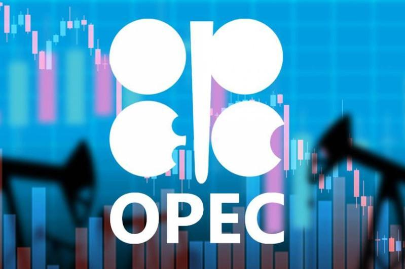 OPEC daily basket price stood at $54.39 a barrel Friday
