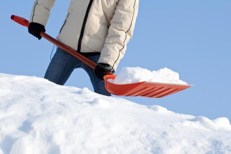 Акмолинская молодежь приняла участие в акции по очистке снега «Снежный десант»