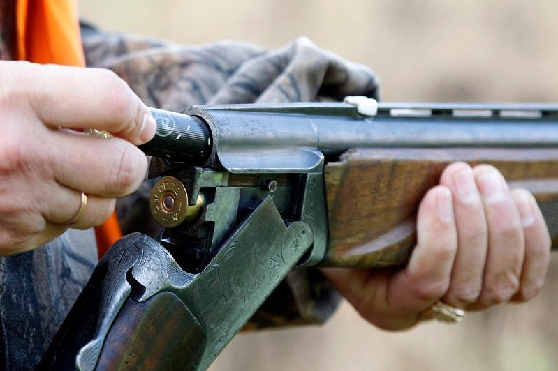 Алматы облысында браконьерлермен күрес күшейді: үш күнде 52 заңбұзушылық анықталды